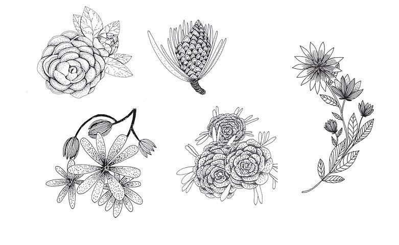 identité graphique illustration bijoux logo