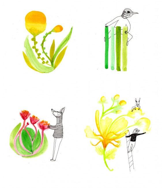 livre écologie recette illustration