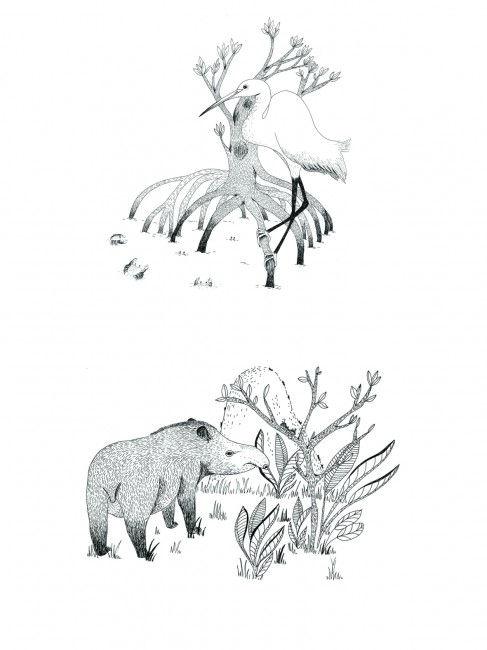 lllustration jeunesse illustratrice illustrateur