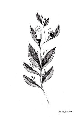 illustration plume