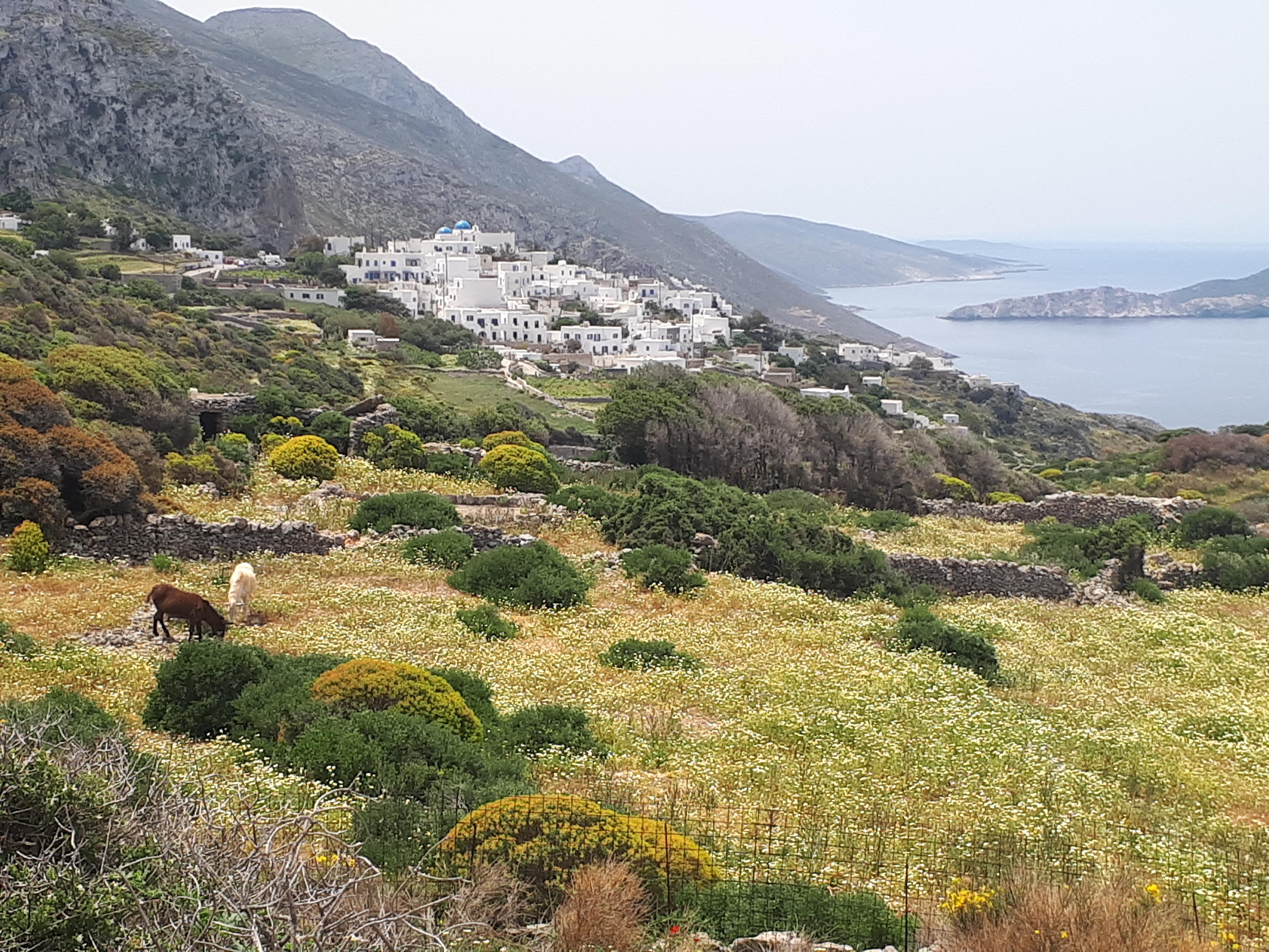 Pleine Présence Amorgos