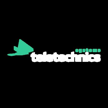 Teletechnics Systems