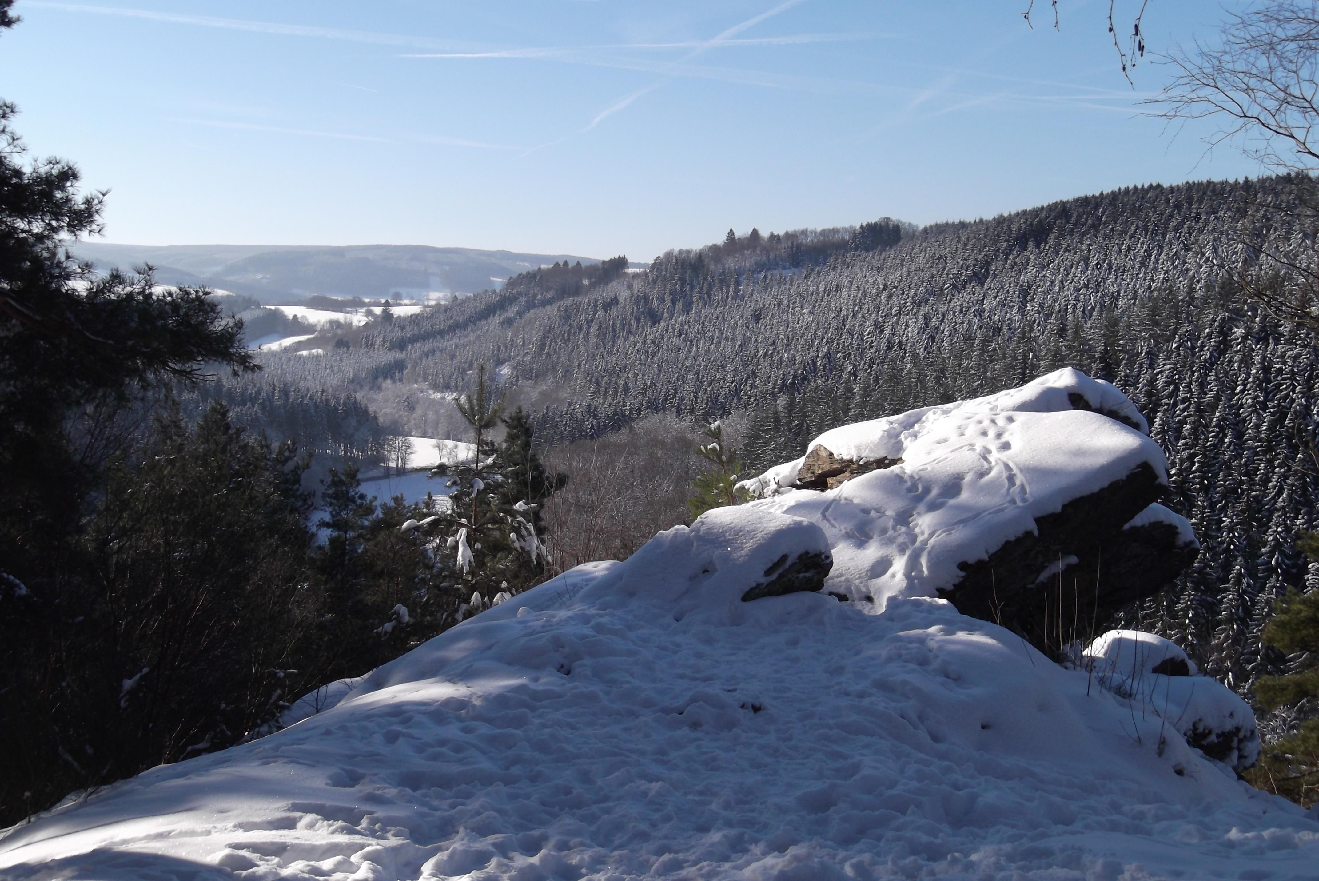 Vallée de la Warche