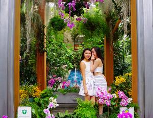 Visiting the United States Botanical Gardens