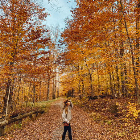 Fall Foliage Drive (Weekend Escape from NYC)