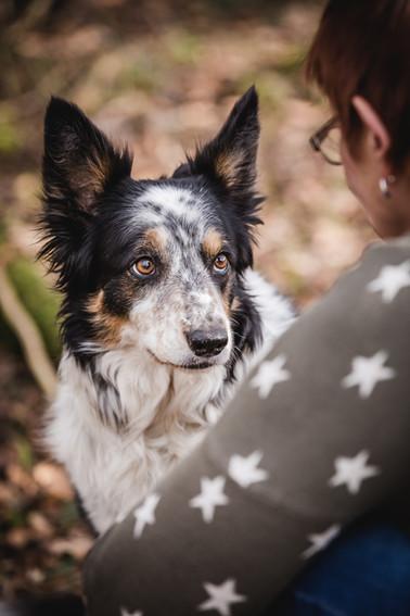 Hundefotograf_Bodensee