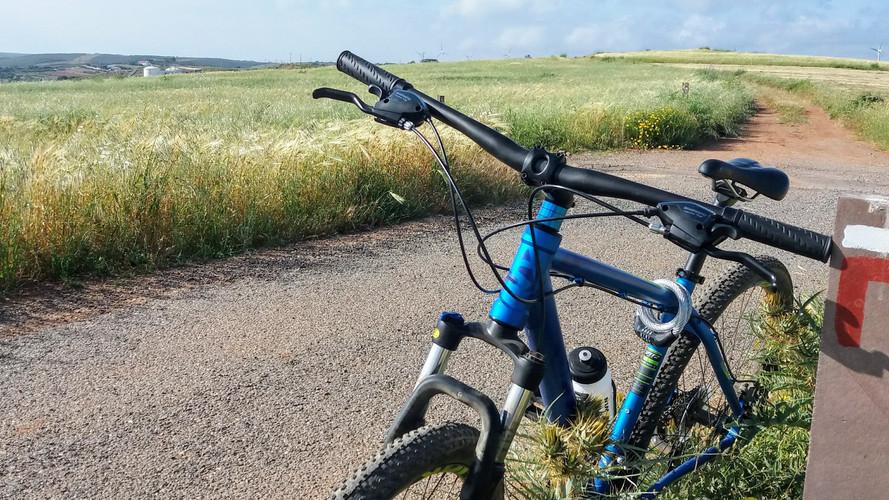 Bike near wheat field in Raposeira