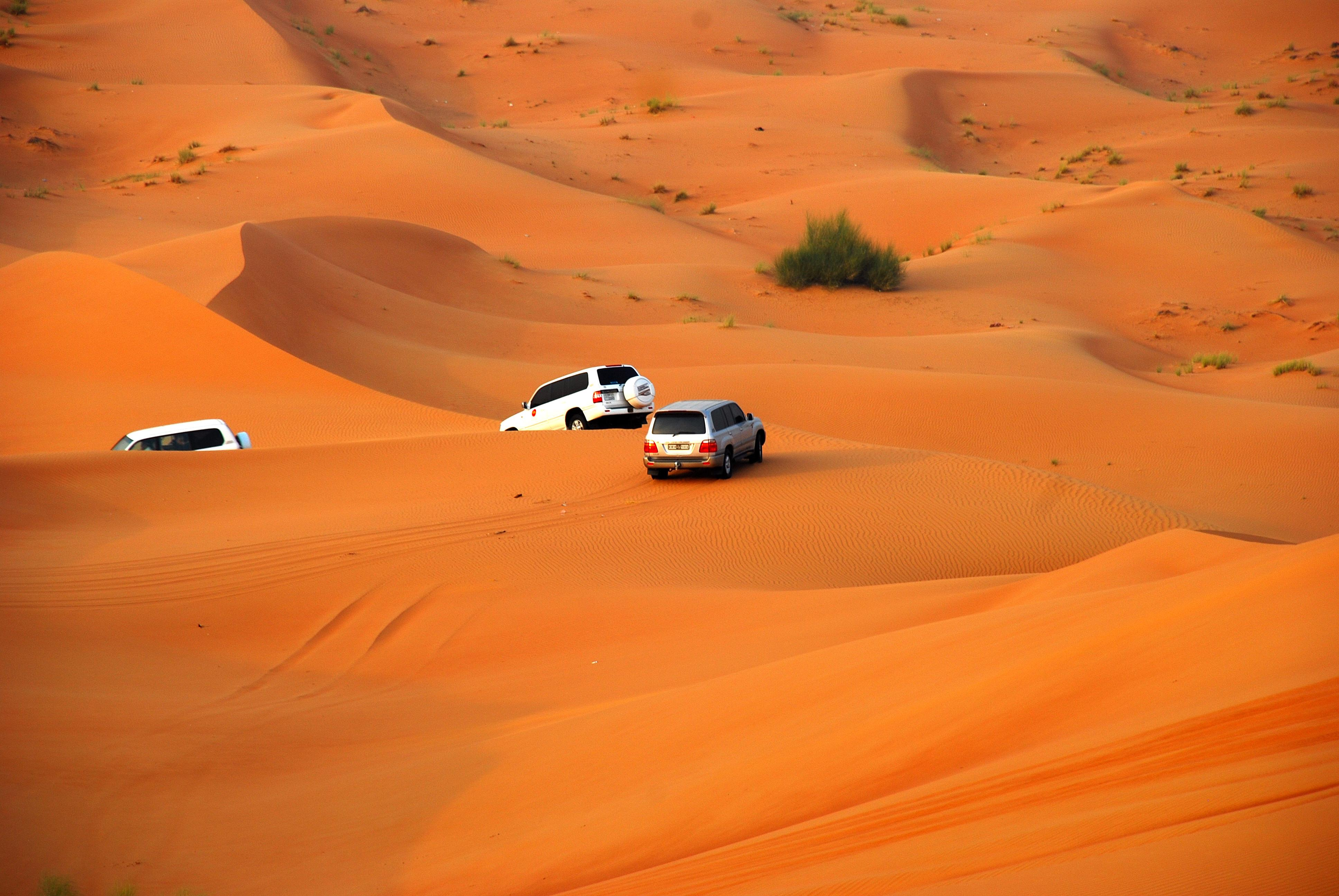 Dubai Desert Safari - Dune Bashing