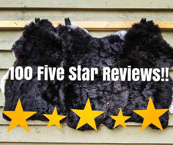 100 reviews.jpg