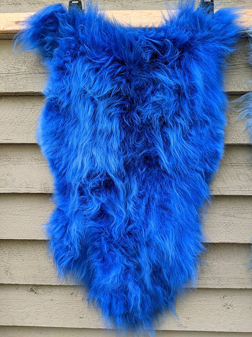 Very blue dyed Icelandic Sheepskin