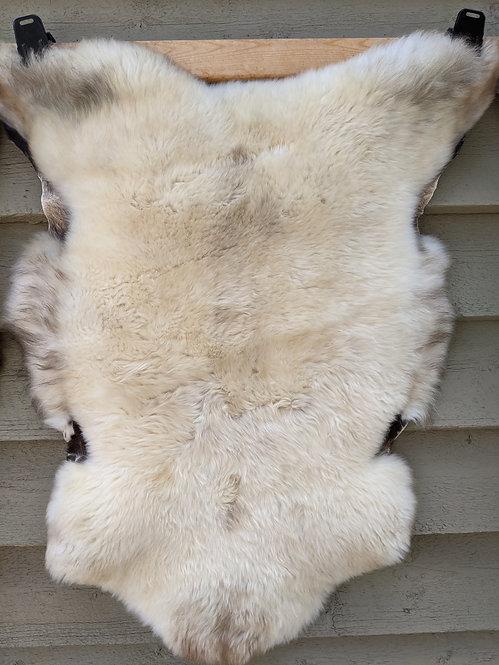 May#5 Fabulous soft British sheepskin