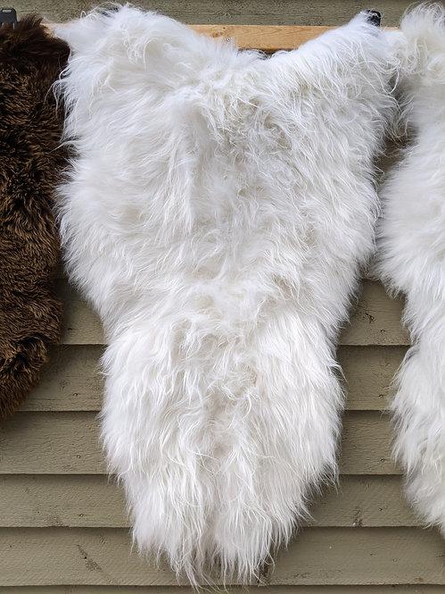 May #11 Massive icelandic sheepskin