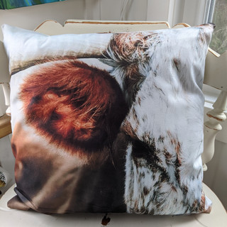 The Cow cushion cover