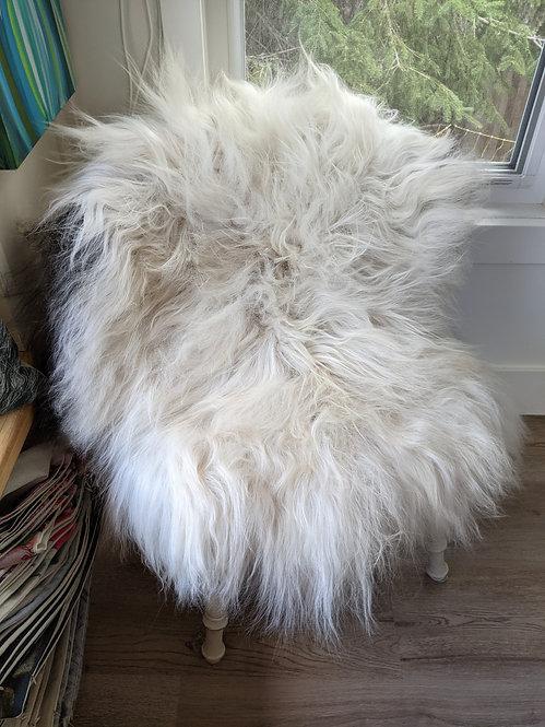 Feb#26 Beautiful Curly Icelandic Sheepskin rug for sale