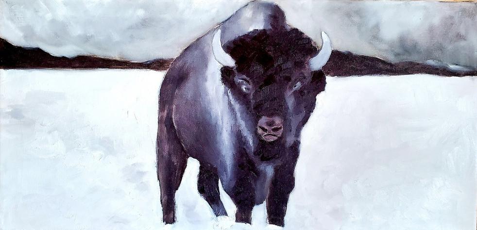 bisonpaulwadeart2.jpg