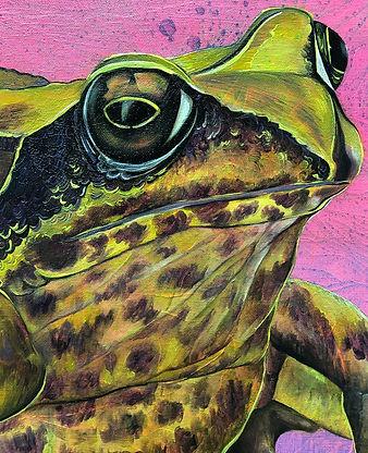 frog, universe, painting, myths, animal, animal art, animal myths, lumi saarikoski, sammakko, taide, myytti, eläintaide, nykytaide