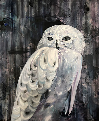 pöllö, maalaus, eläintaide, lintu,owl, oil color, bird, painting, art, contemporary art