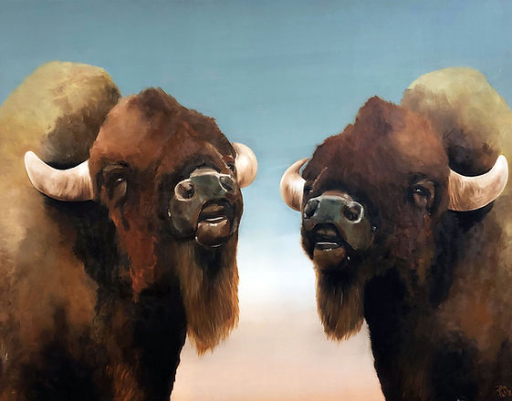 bison, bisons, art, oil colors, animal aer, biisonit, taide, maalaus