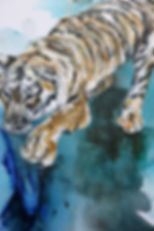 tiger, detail, painting, oil color, tiikeri, taide, maalaus
