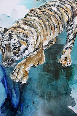 tiger, detail, painting, oil color, tiikeri, taide, maalaus