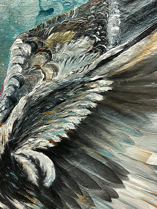 Sotka, bird, bird art, art, painting, finland, animal art, myth, lumi saarikoski, taide, eläintaide, myytti, maalaus