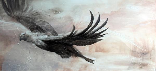 eagle, flying eagle, art, painting, animal art, shadow, kotka, lentävä kotka, maalaus, taide