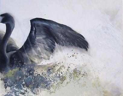black swan, swan, art, painting, street art, fine art, musta joutsen, joutsen, taide, maalaus