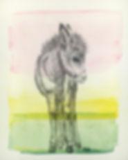 donkey, baby donkey, childrens room art, aasi, onnittelukortti, lastenhuoneen taide