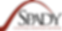 Spady-Logo-1-700x354.png