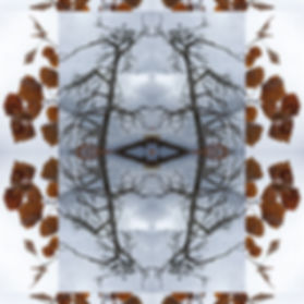 puu5.jpg
