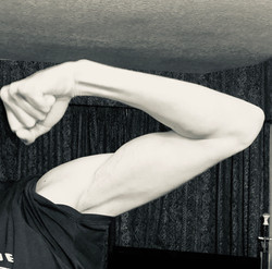 Muscle MANG! X