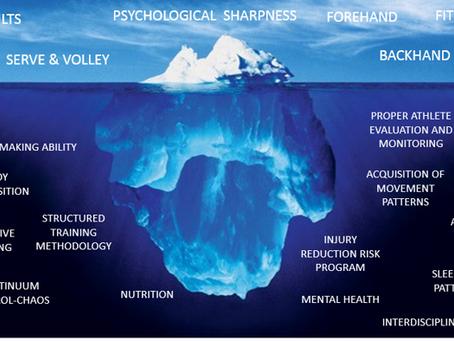 Skills vs Capacities #1