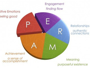 PERMA+ - building resilience through positive psychology