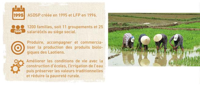 Le soutien apporté à l'ASDSP / LAO Farmers Product et aux paysans laotiens, à travers le commerce équitable contribue à :  - Maintenir la production et valoriser la culture de riz traditionnels au Laos, avec des prix rémunérateurs supérieurs au marché, - Permettre l'investissement pour la transformation locale des produits et créer ainsi des emplois - Appuyer des projets de développement communautaires intégrant les aspects environnementaux. - Développer les modes de production biologique  Plus de détails dans l'étude complète