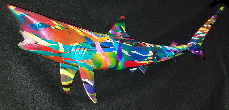 sharkNew