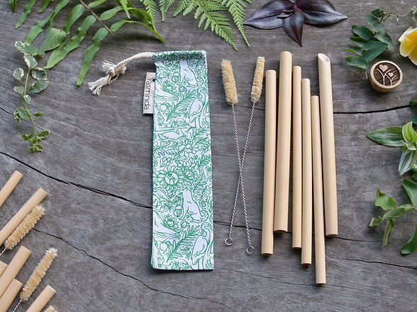 Straw Set - 6pcs - Yas Nature.jpg