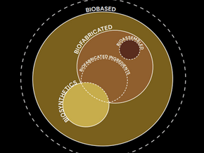 Biomaterials: a brief guide to understanding its impact on fashion