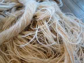 From natural fibres to the ancestral Guayusa leaf