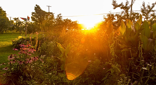 jardin drouin