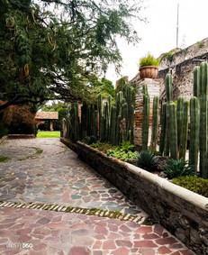 """Hacienda """"La Solariega"""""""