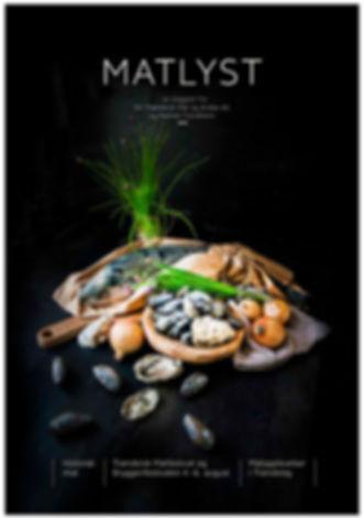 Magazine-MATLYST-#2.jpg