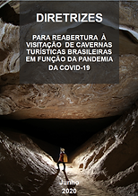 CAPA-COVID19.png