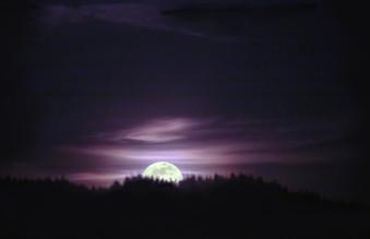 Pink Moon.jpg