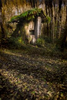 Stump House sm.jpg