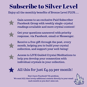 Subscribe to Silver Level (1).png