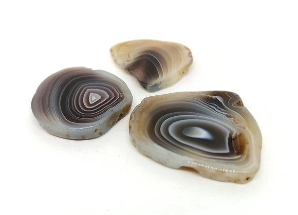 Polished Mini Botswana Agate Slices