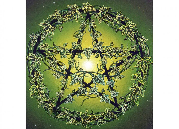 Ivy Pentagram