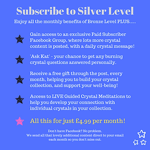 Subscribe to Silver Level.png