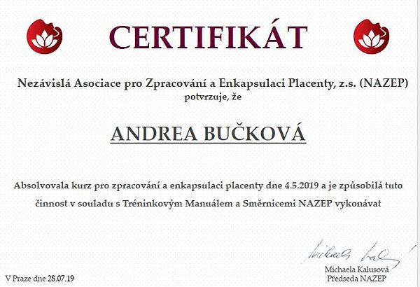 Výstřižek certifikát.JPG