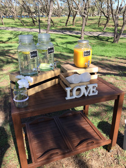Standard or Deluxe Drink Station